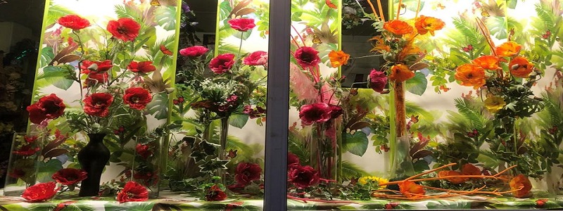 Fareham Florist Christmas Window